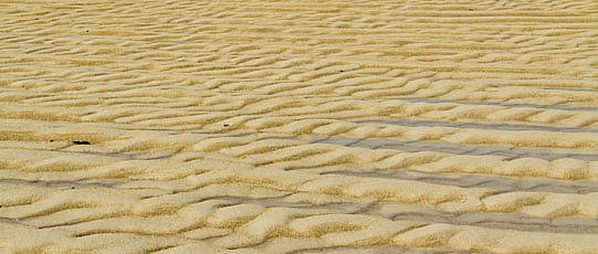 Sand dune with regular pattern.